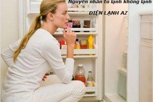 Nguyên Nhân Tủ Lạnh Không Lạnh | Không Làm Được Đá