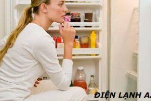 Tủ Lạnh Chạy Bao Lâu Thì Ngắt 1 Lần | Nguyên Lý Hoạt Động